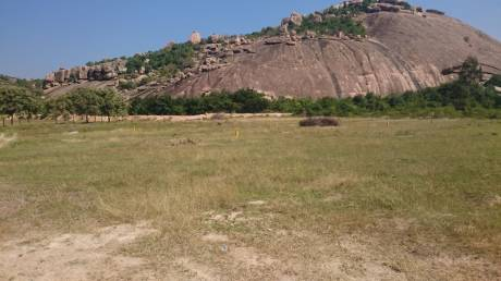 358 sqft, Plot in Aliens Hub Kadthal, Hyderabad at Rs. 14.0000 Lacs
