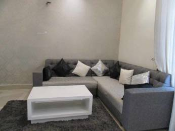 900 sqft, 2 bhk Apartment in Wisteria Nav Floor Sector 124 Mohali, Mohali at Rs. 22.0001 Lacs