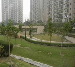2495 sqft, 4 bhk Apartment in Sethi Group and Max City Developers Max City Park Sapphire Sector 6 Vaishali, Ghaziabad at Rs. 25000