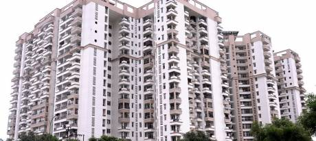1950 sqft, 3 bhk Apartment in Ramprastha Pearl Court Sector 7 Vaishali, Ghaziabad at Rs. 23000