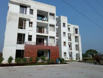 1330 sqft, 3 bhk Apartment in Builder 3BHK Apartments in Sector 125 Sector 125 Mohali, Mohali at Rs. 33.5000 Lacs