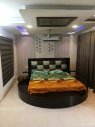500 sqft, 1 bhk BuilderFloor in Builder Maurya Enclave Pitampura, Delhi at Rs. 20000