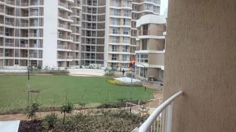 1350 sqft, 3 bhk Apartment in Builder Samraat Tropicano Gangapur Rd, Nashik at Rs. 18000