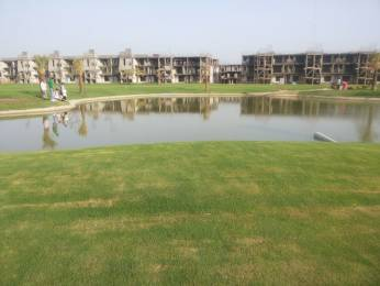 500 sqft, 1 bhk Apartment in Supertech Up Country Apartments Sector 17A, Greater Noida at Rs. 15.5500 Lacs