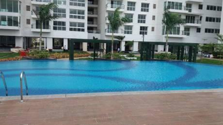 2344 sqft, 3 bhk Apartment in Karle Zenith Residences Nagavara, Bangalore at Rs. 60000