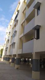 1224 sqft, 3 bhk Apartment in Builder Project PMPalem, Visakhapatnam at Rs. 44.0000 Lacs