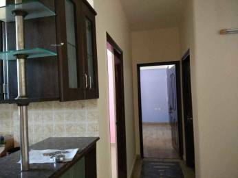 470 sqft, 1 bhk Apartment in Ansal Neel Padam I Sector 5 Vaishali, Ghaziabad at Rs. 8700