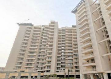 1650 sqft, 3 bhk Apartment in Exotica East Square Ahinsa Khand 2, Ghaziabad at Rs. 75.0000 Lacs