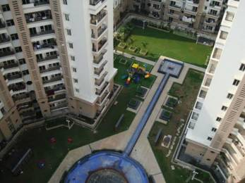 1170 sqft, 2 bhk Apartment in Ramprastha Pearl Court Sector 7 Vaishali, Ghaziabad at Rs. 78.0000 Lacs