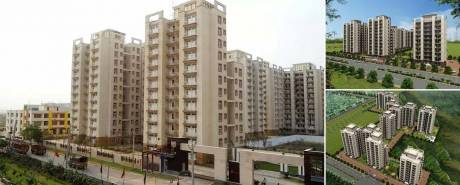 1437 sqft, 3 bhk Apartment in Tulip Orange Sector 70, Gurgaon at Rs. 78.0000 Lacs