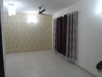 2200 sqft, 3 bhk BuilderFloor in Builder Project Sector 44, Noida at Rs. 20000