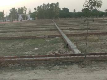 1500 sqft, Plot in Shine Valley Mohanlalganj, Lucknow at Rs. 7.5000 Lacs