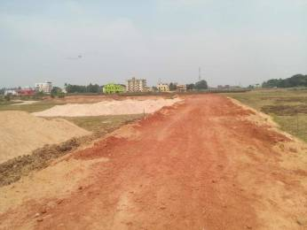 1000 sqft, Plot in Builder Project Phulnakhara, Bhubaneswar at Rs. 11.5000 Lacs