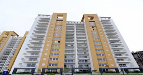 2032 sqft, 3 bhk Apartment in BPTP Park Grandeura Sector 82, Faridabad at Rs. 78.5000 Lacs