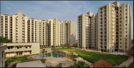 1661 sqft, 3 bhk Apartment in RPS Savana Sector 88, Faridabad at Rs. 57.6000 Lacs