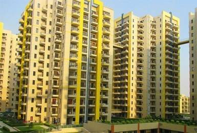 1250 sqft, 2 bhk Apartment in RPS Savana Sector 88, Faridabad at Rs. 47.0000 Lacs
