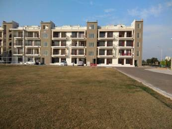 1250 sqft, 3 bhk Apartment in Best Orchid Greens Sector 115 Mohali, Mohali at Rs. 35.9900 Lacs