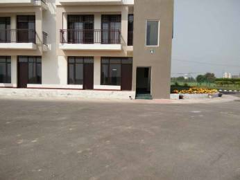 1250 sqft, 3 bhk Apartment in Best Orchid Greens Sector 115 Mohali, Mohali at Rs. 35.0000 Lacs