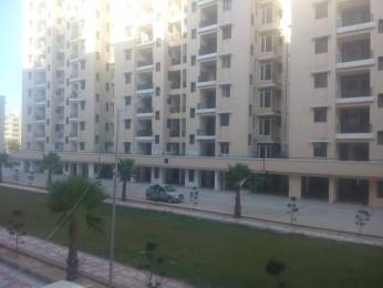 1737 sqft, 3 bhk Apartment in WWICS Imperial Heights Sector 115 Mohali, Mohali at Rs. 45.0000 Lacs
