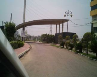 2250 sqft, Plot in TDI City Plots 1 Sector 118 Mohali, Mohali at Rs. 44.0000 Lacs