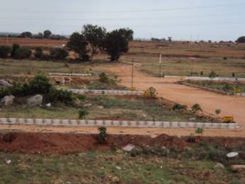 1800 sqft, Plot in White I City Timmapur, Hyderabad at Rs. 5.9980 Lacs