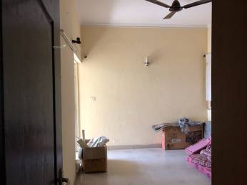 1623 sqft, 3 bhk Apartment in Assotech Windsor Park Vaibhav Khand, Ghaziabad at Rs. 26000