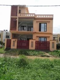 1800 sqft, 3 bhk BuilderFloor in Builder Project Brahmanwala, Dehradun at Rs. 1.1000 Cr