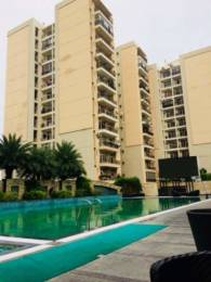 1775 sqft, 3 bhk Apartment in Builder Project Omaxe Residency 1, Lucknow at Rs. 25000