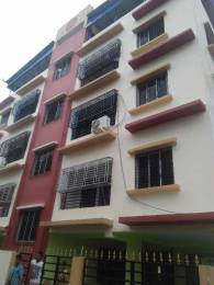 1200 sqft, 3 bhk Apartment in Builder Flat Madurdaha, Kolkata at Rs. 16000