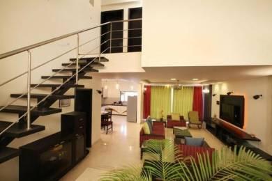 6000 sqft, 4 bhk Apartment in Builder Gulmohar Road juhu Juhu, Mumbai at Rs. 20.0000 Cr