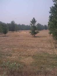 2520 sqft, Plot in Builder Project Ajitpur, Rampur at Rs. 70.0000 Lacs