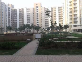 1100 sqft, 2 bhk Apartment in Puri Pratham Sector 84, Faridabad at Rs. 41.4600 Lacs