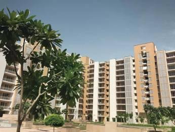 1300 sqft, 2 bhk Apartment in Puri Pratham Sector 84, Faridabad at Rs. 48.5700 Lacs