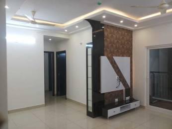 1121 sqft, 2 bhk Apartment in Prestige Norwood at Sunrise Park Electronic City Phase 1, Bangalore at Rs. 25000