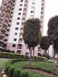 2021 sqft, 3 bhk Apartment in Builder 3 BHK Residential Apartment for Sale Sector 47, Gurgaon at Rs. 1.5500 Cr