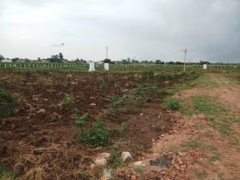 2700 sqft, Plot in Builder Go Green Farm lands Nedunur, Hyderabad at Rs. 5.9000 Lacs