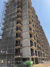 481 sqft, 1 bhk Apartment in AVL AVL 36 Sector 36A, Gurgaon at Rs. 16.8400 Lacs