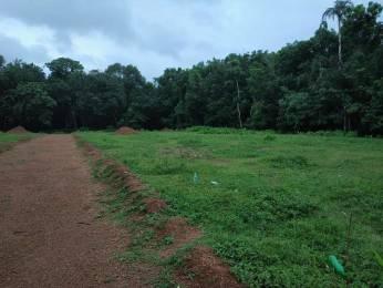 1600 sqft, Plot in Builder Project Pukkattupady, Kochi at Rs. 26.0000 Lacs