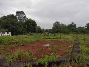 3600 sqft, Plot in Builder Project Kakkanad, Kochi at Rs. 30.0000 Lacs