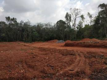1800 sqft, Plot in Builder Project Pukkattupady, Kochi at Rs. 2.9500 Lacs