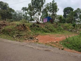 10000 sqft, Plot in Builder Project Pukkattupady, Kochi at Rs. 1.0000 Cr
