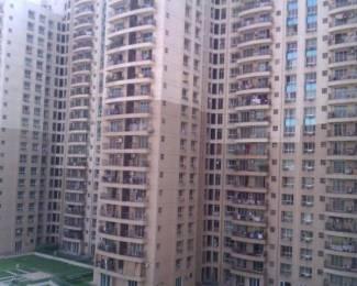 1300 sqft, 2 bhk Apartment in Builder salesteya hight Malad West, Mumbai at Rs. 45000