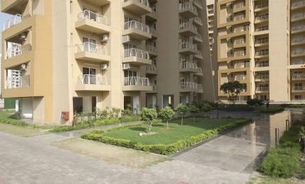 3050 sqft, 4 bhk Apartment in Suncity Parikrama Housing Complex Sector 20, Panchkula at Rs. 1.6500 Cr