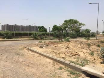 2250 sqft, Plot in Builder BPTP Y Block Plots Sector 76, Faridabad at Rs. 44.9500 Lacs