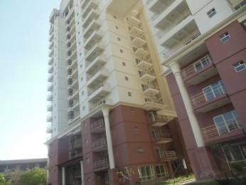 2137 sqft, 3 bhk Apartment in SPR Imperial Estate Sector 82, Faridabad at Rs. 84.9000 Lacs