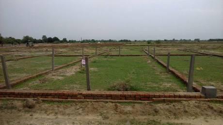 800 sqft, Plot in Builder Project Danapur Naubatpur Road, Patna at Rs. 5.2000 Lacs