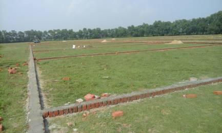 2450 sqft, Plot in Builder Shine valley Bongara Rani Road, Guwahati at Rs. 4.9245 Lacs