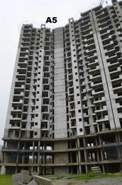 585 sqft, 1 bhk Apartment in Builder Amrapali Dream Valley High Rise Noida Extn, Noida at Rs. 17.5500 Lacs