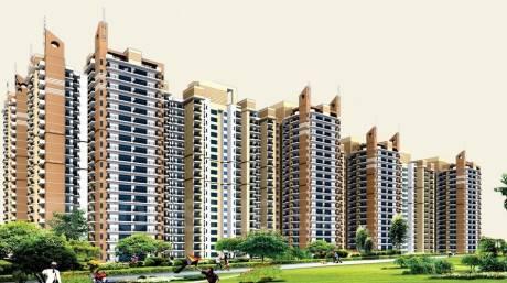 1245 sqft, 3 bhk Apartment in Builder Nirala Estate Noida Extn, Noida at Rs. 41.0850 Lacs