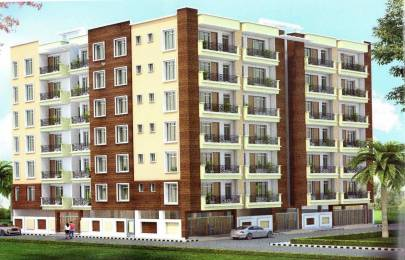 850 sqft, 2 bhk Apartment in Builder Green view appartment Sector 121, Noida at Rs. 27.9000 Lacs